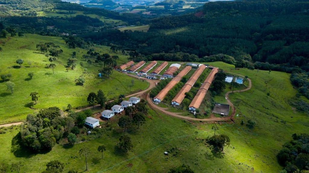 Agropecuária Carboni: 34 anos de inovação na produção agrícola DJI 0129