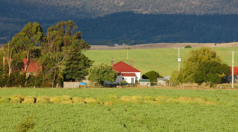 O certificado de cadastro de imóvel rural (CCIR) 2020 já está valendo!
