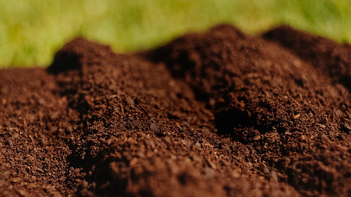 Raiz Fértil é o composto orgânico da Agropecuária Carboni