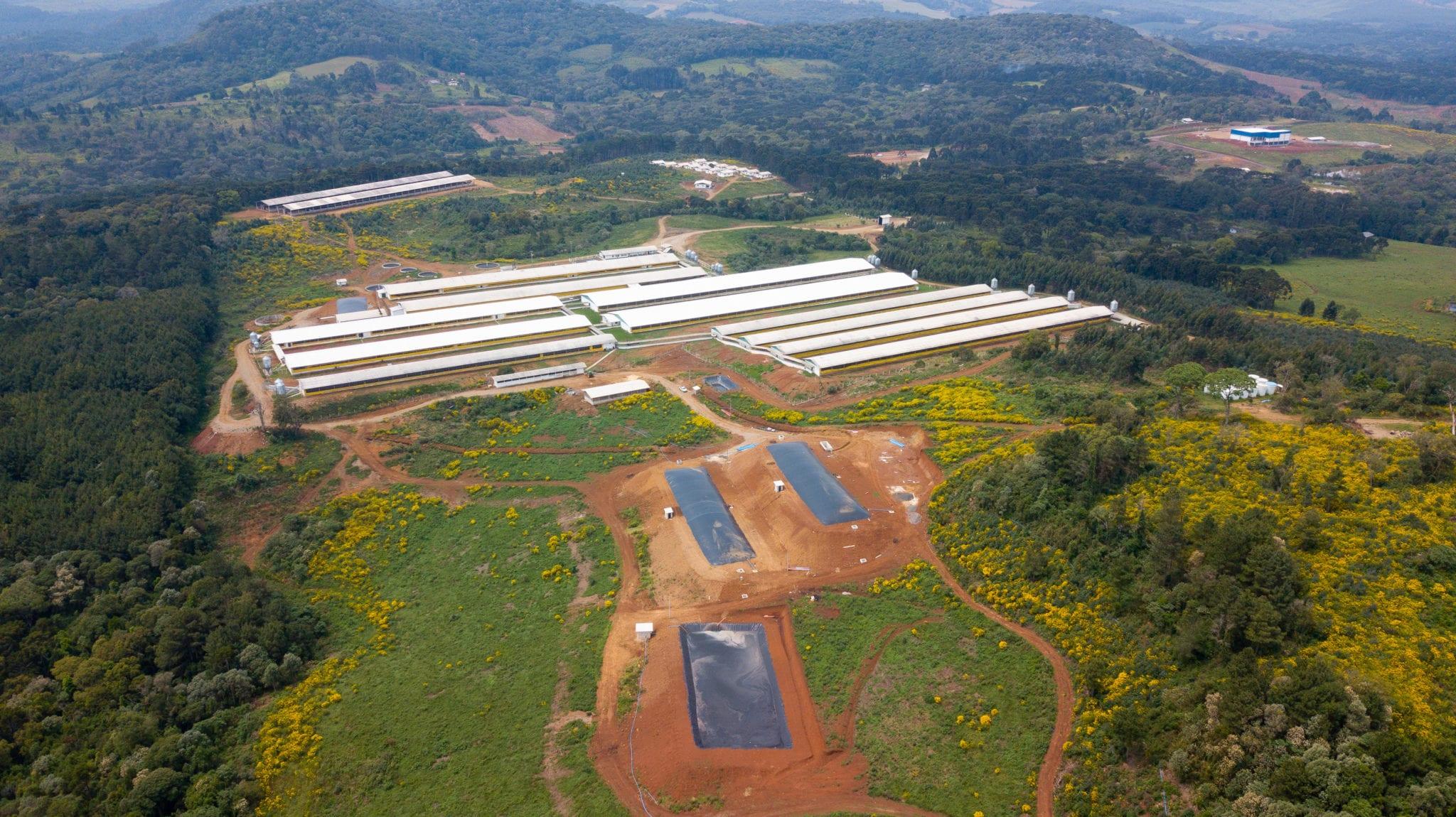 Proteger o Meio Ambiente é um dos compromissos da Carboni DJI 0023 scaled