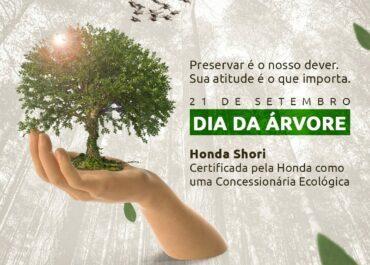 21/09: Dia da Árvore!